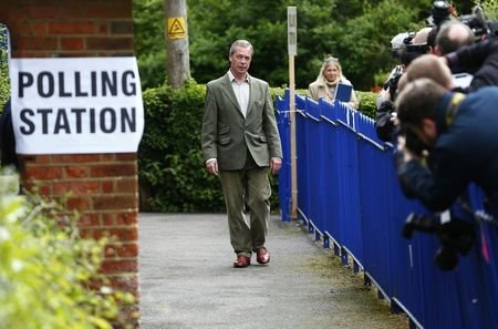 Nigel Farage UKIP voting