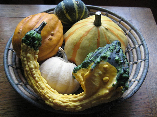 This, apparently, is a decorative gourd.