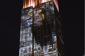 Cecil the Lion - Empire State Building