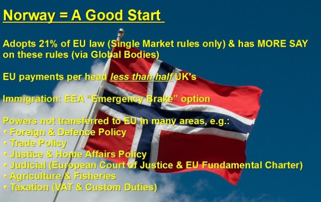 Norway Option - A Good Start - Brexit - Flexcit - EU Referendum - European Union