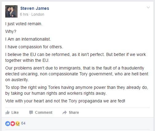 Virtue Signalling - EU Referendum - Vote Remain