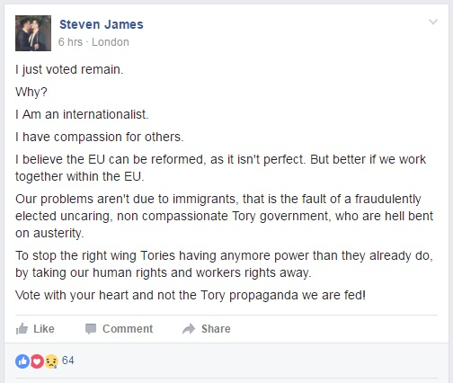 Virtue Signalling - EU Referendum - Vote Remain