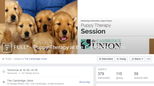 cambridge-union-puppy-therapy-therapets-mental-health-stress-infantilisation