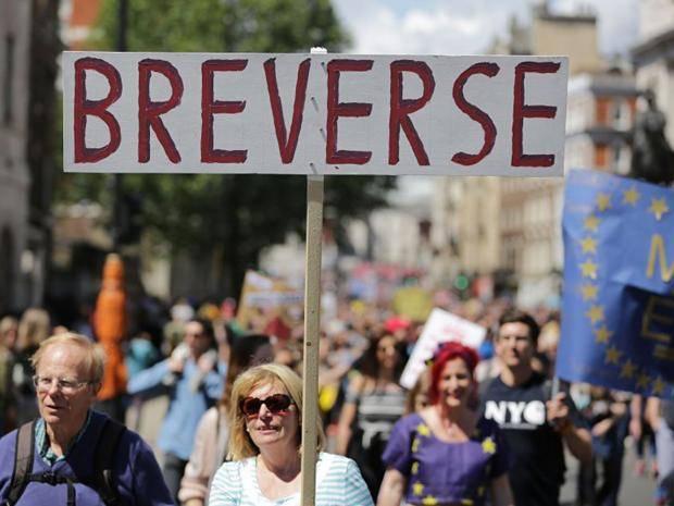Brexit - EU protesters - Breverse