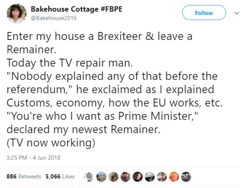 Helen Holdsworth FBPE Brexit 1