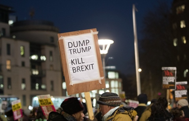 Protest Sign - Dump Trump Kill Brexit